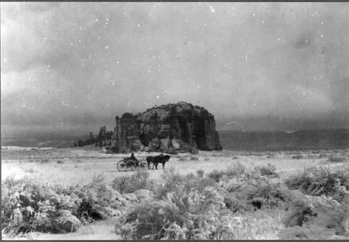 1908-Zuni Mountains by USDA Forest Service via Wikimedia Commons