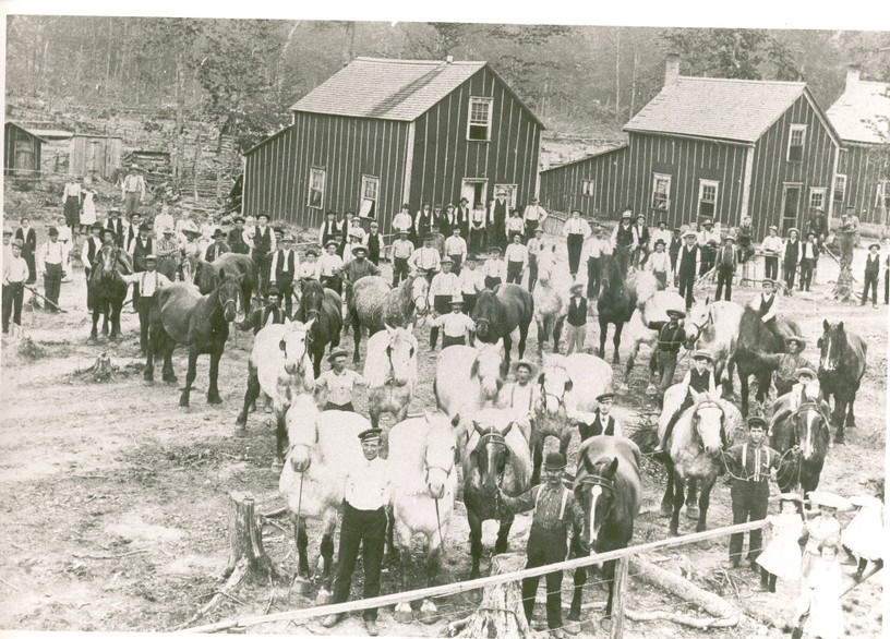 CoalwoodCa1900-1_(2) by USDA Forest Service